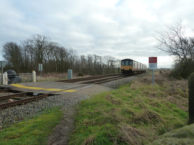Level Crossing and Train by Crossings Wood