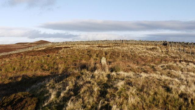 Boundary stone on Stony Hill