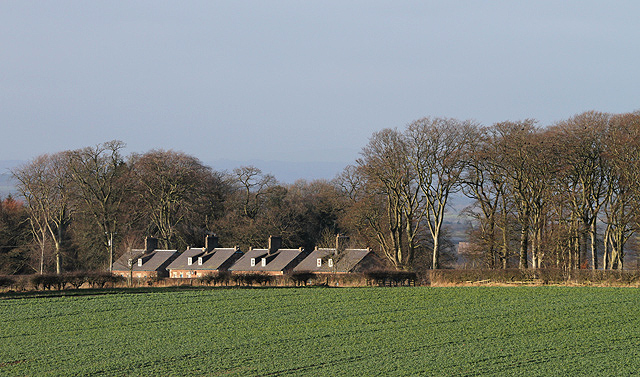 Roadside cottages at Easter Softlaw