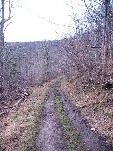 Daleside track, Riccal Dale
