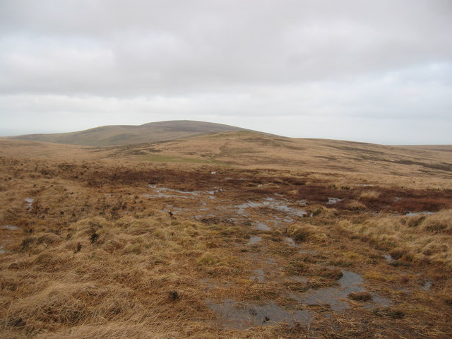 Moorland north of Wild Tor