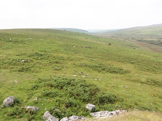 Moorland Hillside to the west of Witheybrook Marsh
