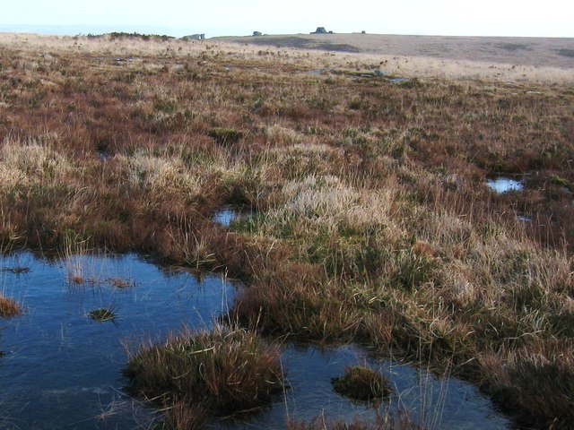 Moorland North East of Hangingstone Hill