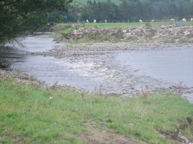 The River Banwy