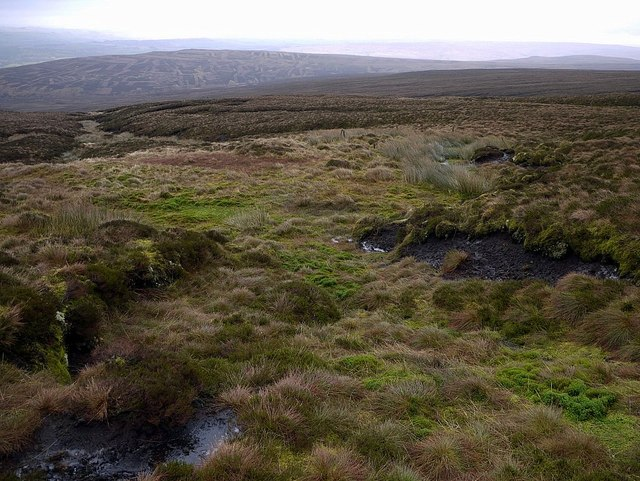 Bog north-east of Cold Fell