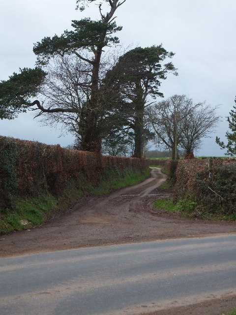 Bridleway to Gogwell