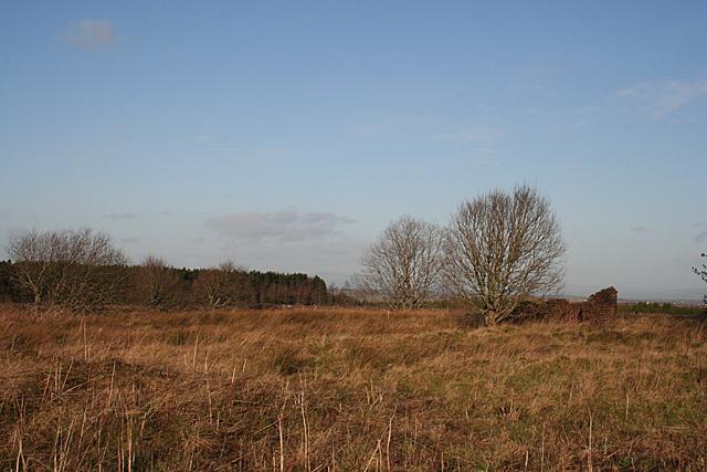 Fauldhouse Moor