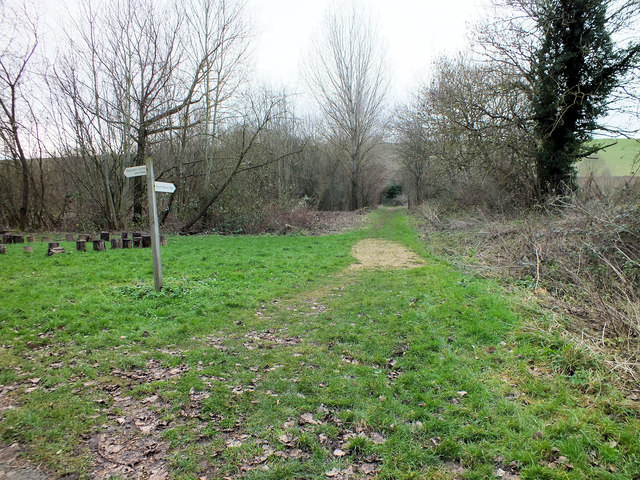 Footpath to the hide