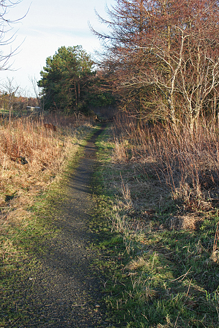 Path from Fauldhouse