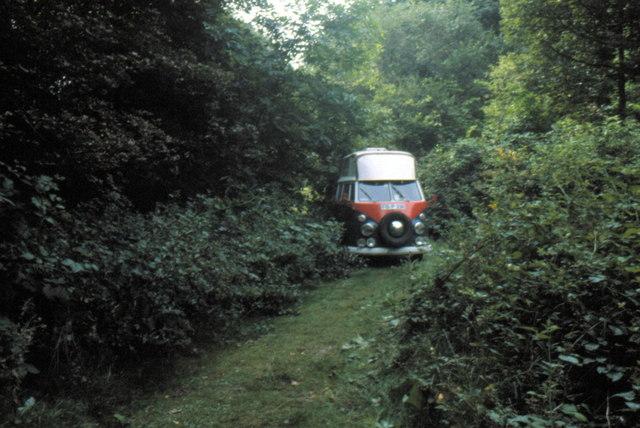 Hothfield Common - 1981
