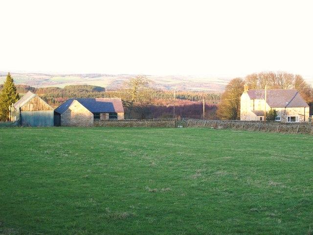 Farmland and woodland near Backworth Letch