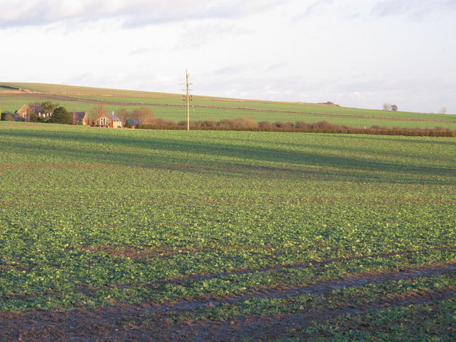 Farmland west of Kiln Pit Hill