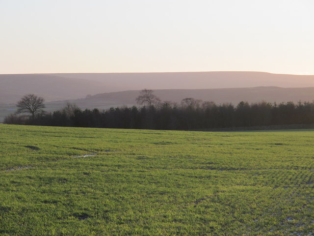 Farmland and woodland at Barley Hill