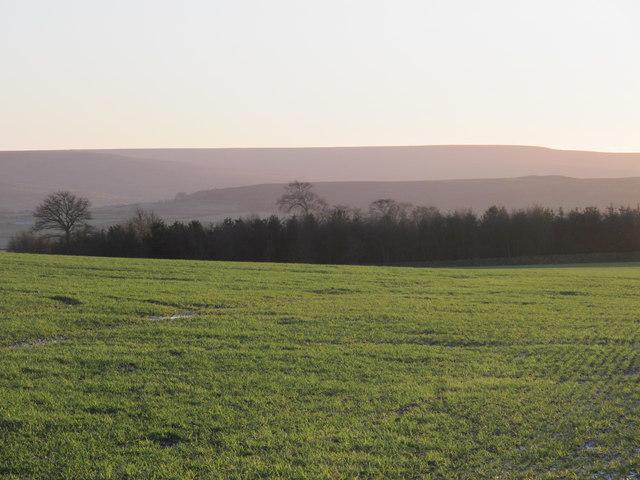 Farmland and woodland at Barley Hill