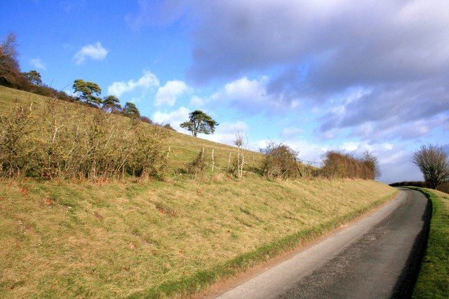 Road by Lingley Knoll
