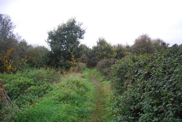 The Blackwater Valley Path