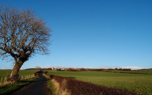Minor Road to Little Foulton Farm