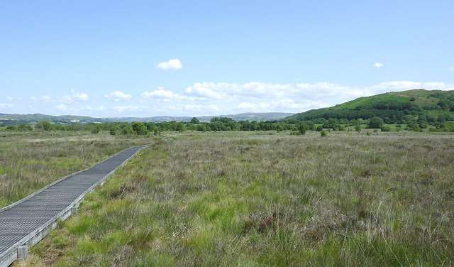 Cors Caron - The Bog of Tregaron, Ceredigion