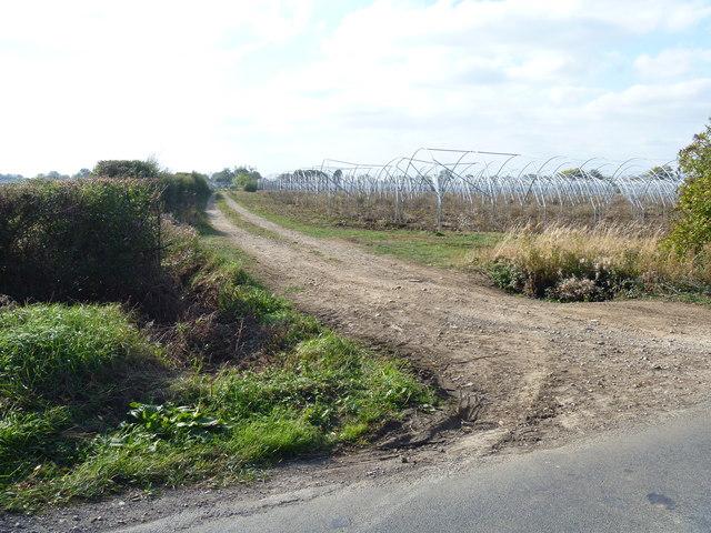 Footpath to Bretforton [1]