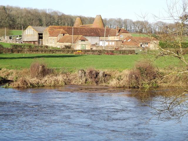Mill Pond, Frensham