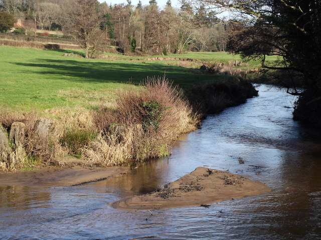 River Wey Below Frensham Mill