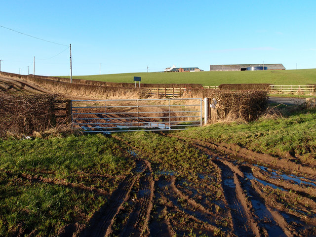 Field Gate, Raith Farm