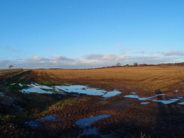 Stubble Field,Shawhill Farm