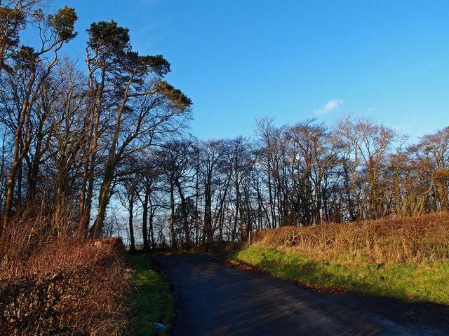 Minor Road Junction Near High Wardneuk
