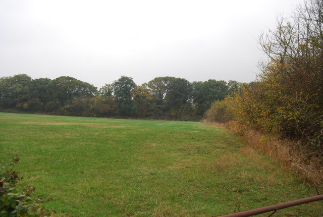 The northern edge of Clowes Wood