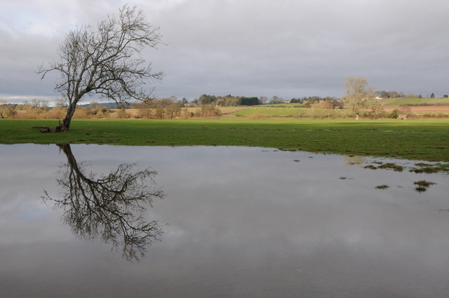 Floodwater on a meadow, Sellack