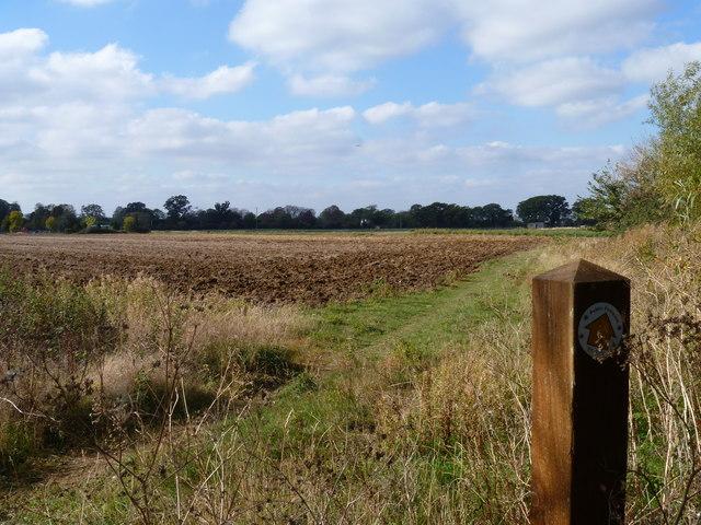 Footpath to Bretforton [3]