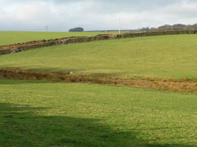 The walls alongside Broadstone Road
