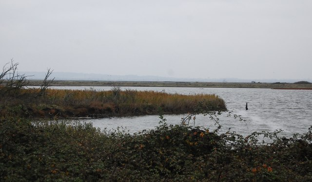Cliffe Pools Nature Reserve