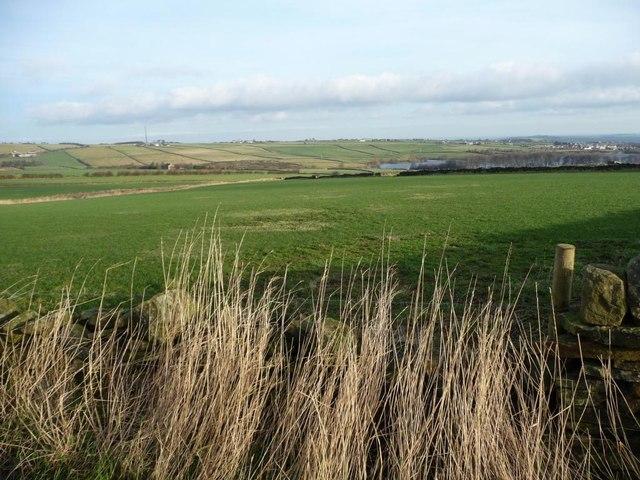 Farmland, Ingbirchworth Moor