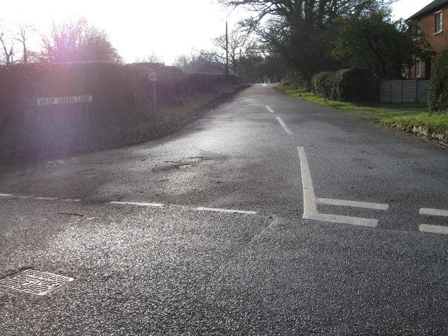 Wasp Green Lane in winter sunshine