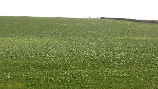 Arable land, Coldingham