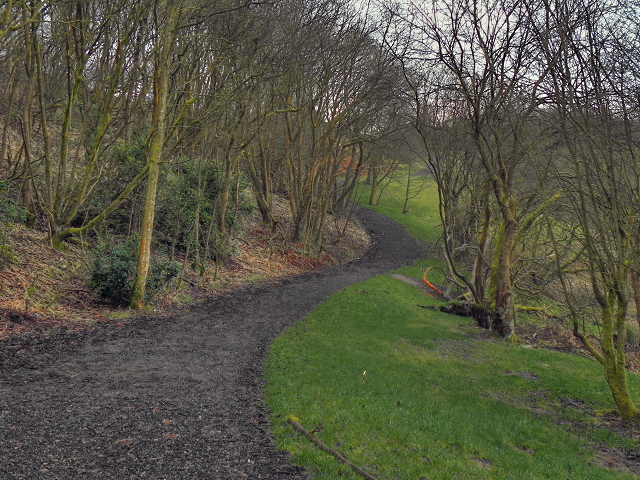 The path through Springwater Park