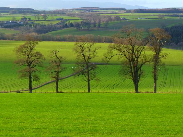Farmland, Hesket