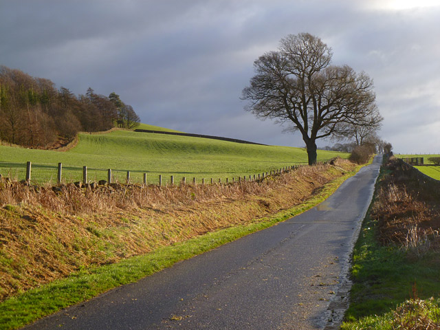 Road and farmland, Hesket