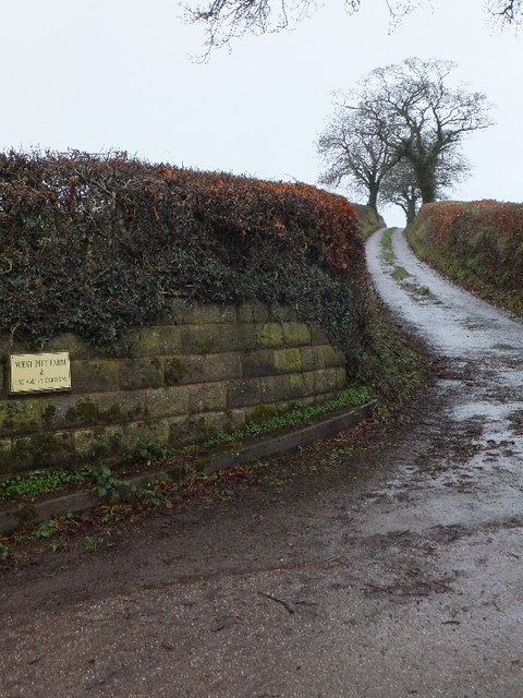 Farm access road to West Pitt Farm