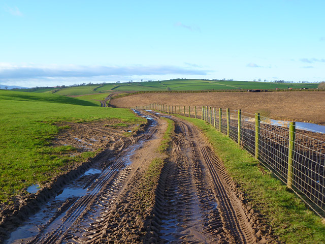 Track and farmland, Kirkoswald