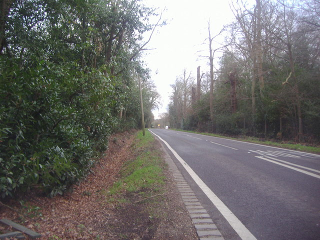 Ferny Hill, Enfield Chase