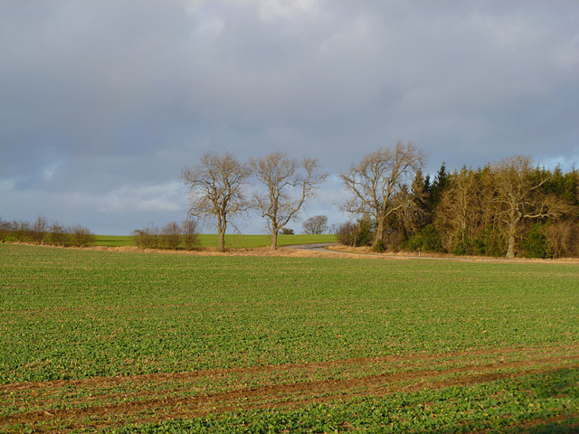 Farmland, Ravensworth