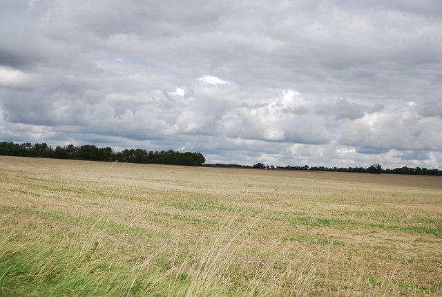 Farmland by Henley Rd