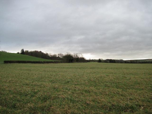 Toward  Prospect  House  Farm