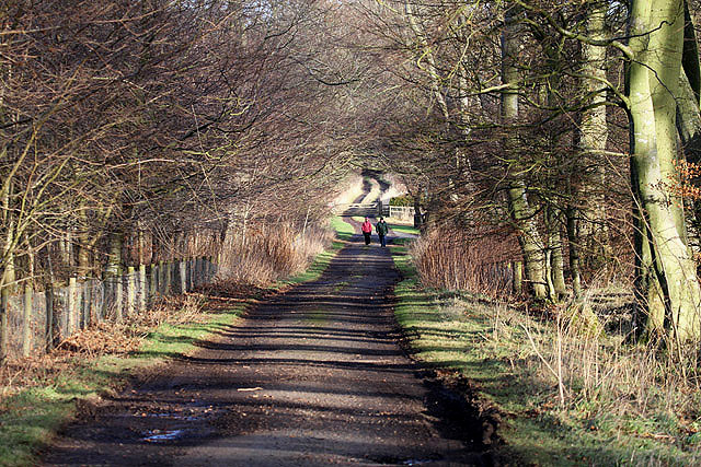 The Green Ride to Marchmont