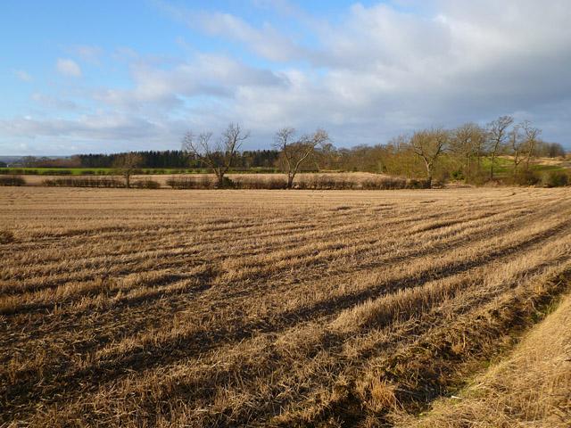 Farmland, East Layton