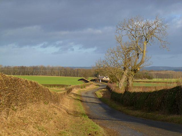 Road, Carkin