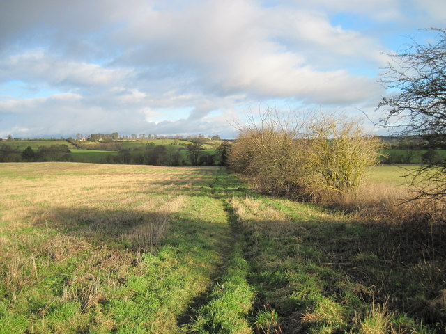 Footpath  to  Dalby