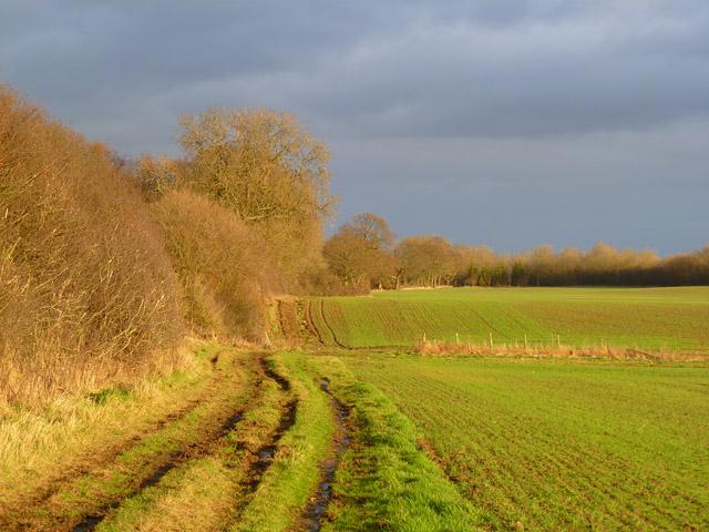 Farmland, Uckerby